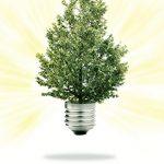 sostenibilidad-2
