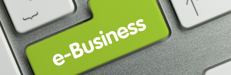 Diplomado en marketing Digital Ebusiness