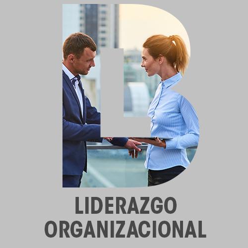 Liderazgo organizacional online